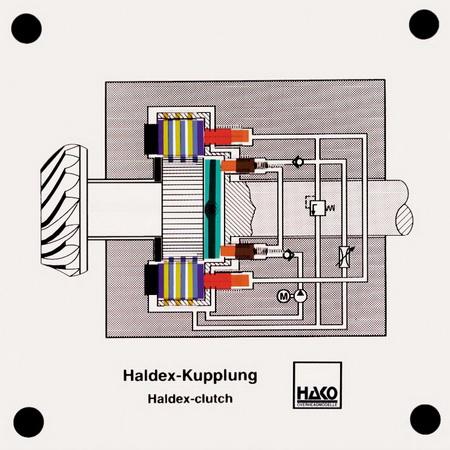 Haldex-Kupplung