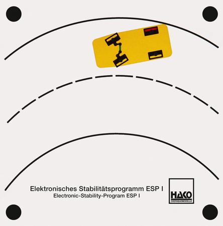 Elektronisches Stabilitätsprogramm ESP